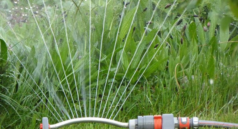 how to water your own lawn