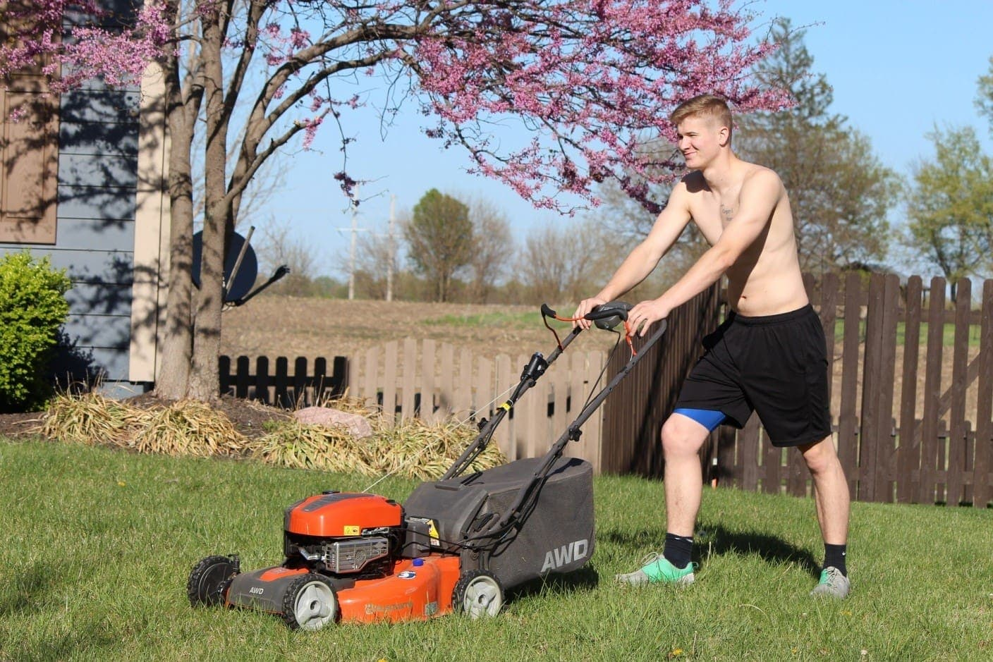 how-to-control-lawn-pets-3
