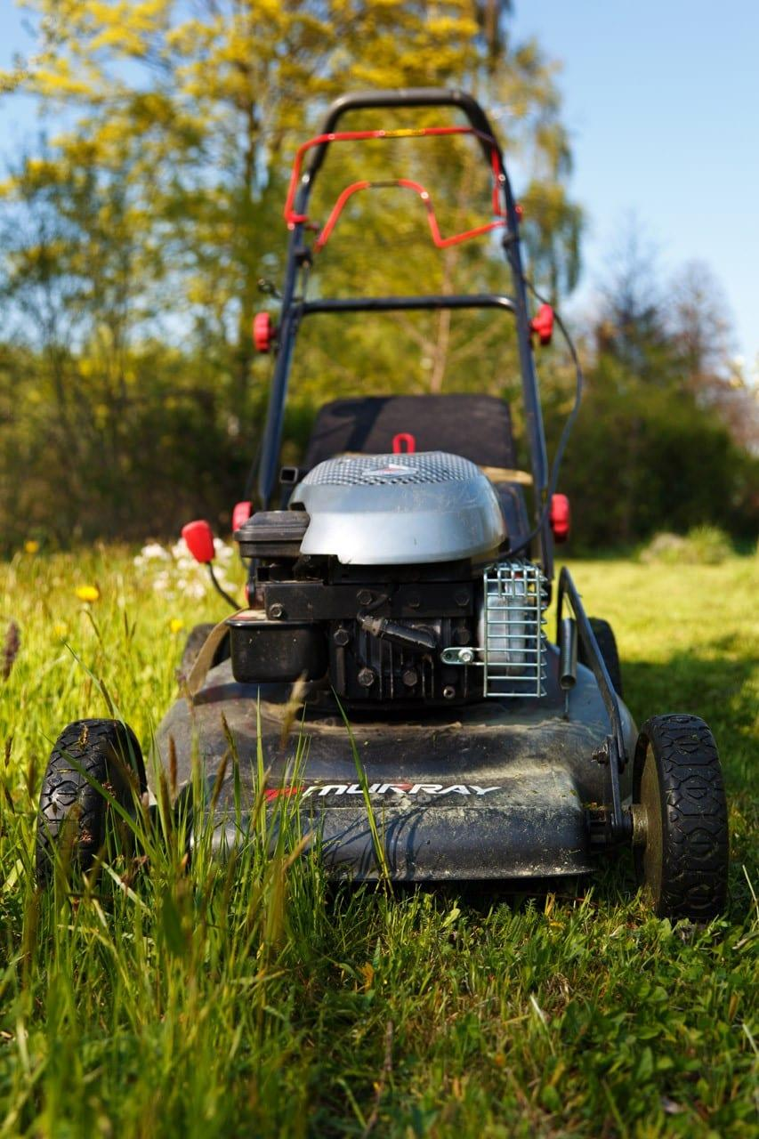 useful-tips-for-summer-lawn-care-3