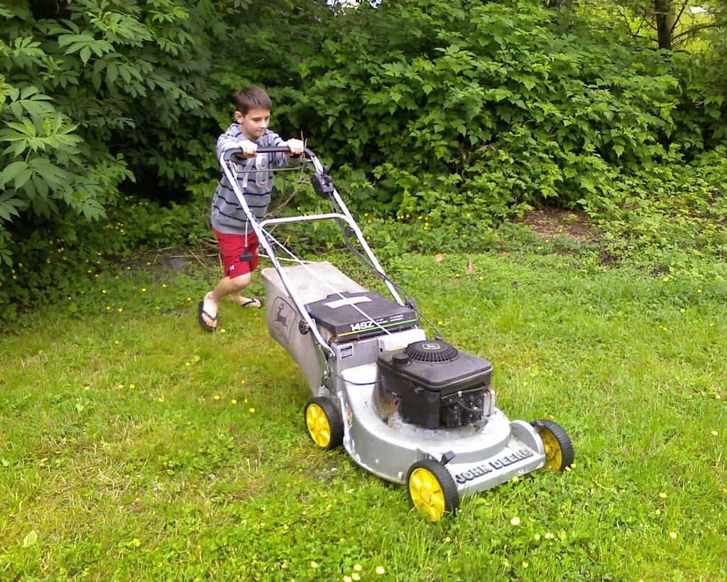 how-to-avoid-summer-lawn-stress-3