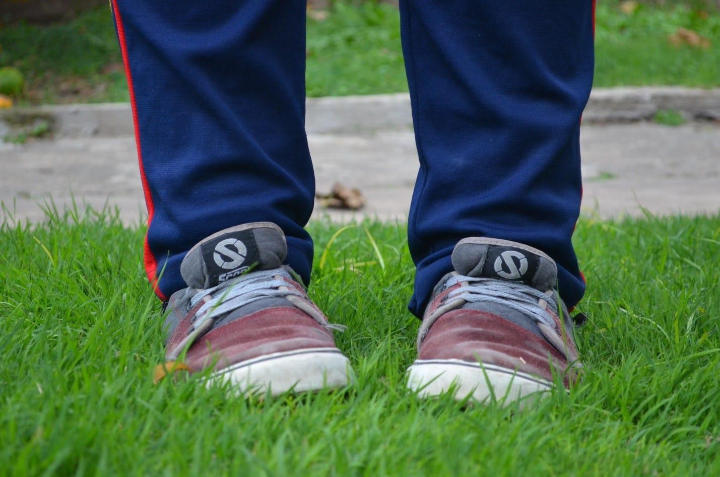 how-to-avoid-summer-lawn-stress-5