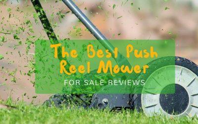 best-reel-push-mower-for-sale-reviews