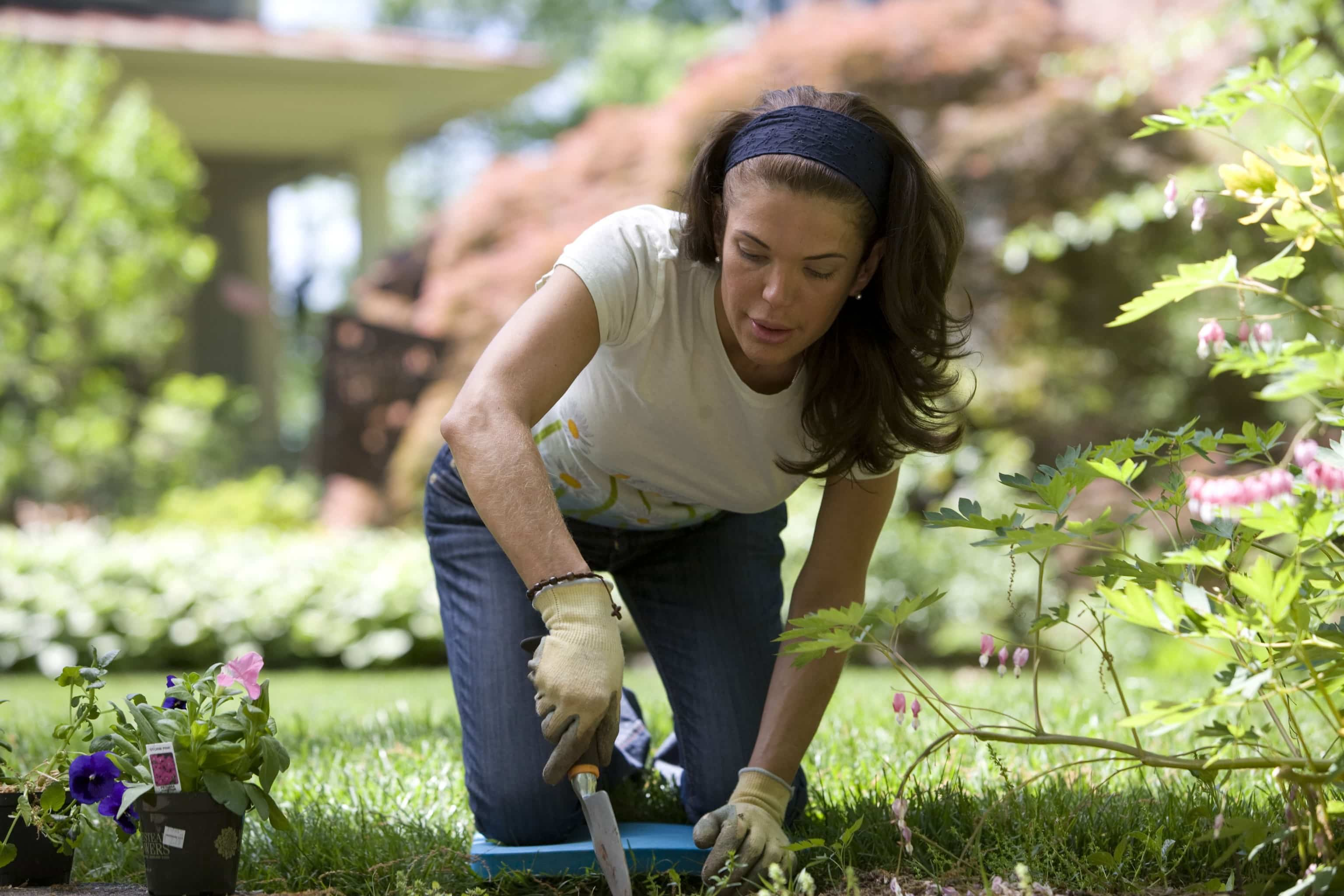 how-to-prevent-weeds-from-invading-your-lawn-4