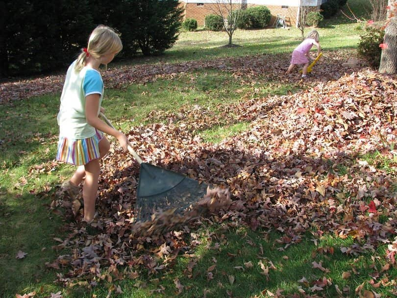Autumn-Lawn-Care-Tips-2