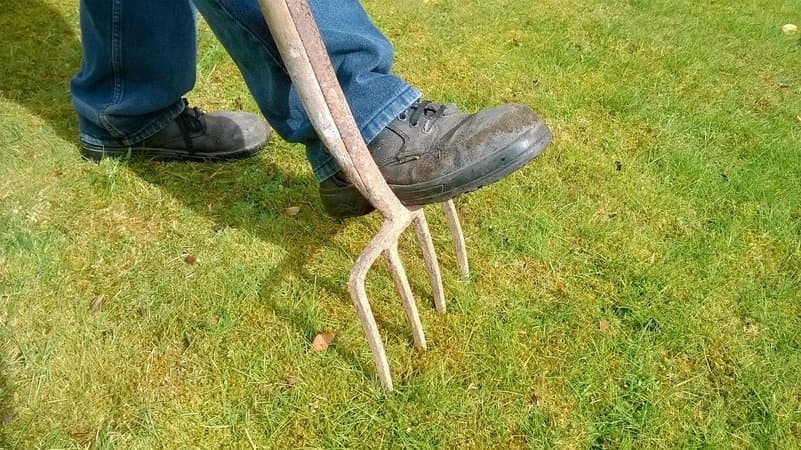 Top-5-Useful-Tips-To-Aerate-Your-Lawn-2