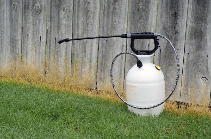 I.	How to choose the best weed killer for your lawns?