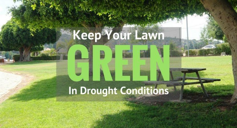 keep-your-lawn-green-in-drought-conditions