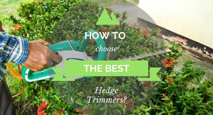 How-to-Choose-the-Best-Hedge-Trimmers