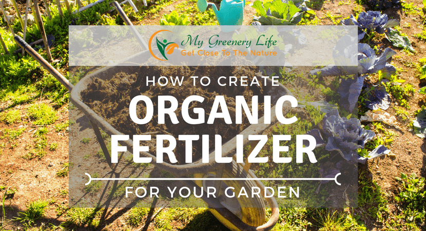 How-to-create-organic-fertilizer-for-your-garden-1
