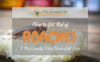 How-to-get-rid-of-roaches-1