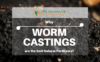 Why-Worm-Castings-are-the-Best-Natural-Fertilizers-1