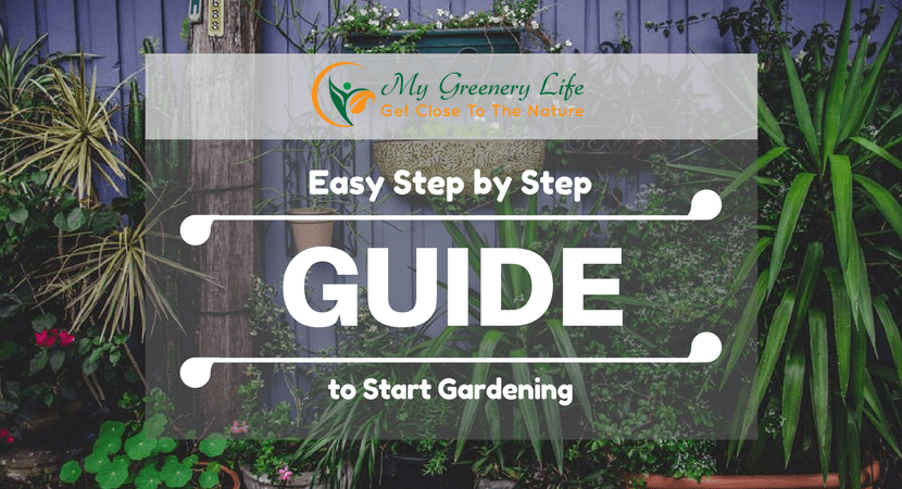easy-step-by-step-guide-to-start-gardening-1