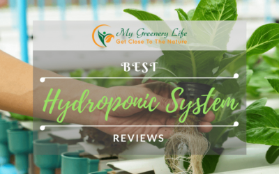 Best-Hydroponic-System-Reviews-1