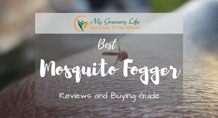 Best-Mosquito-Fogger-Reviews