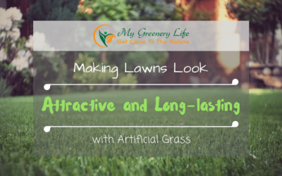 making-lawns-look-attractive-and-long-lasting