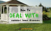 how-to-deal-with-summer-lawn-diseases