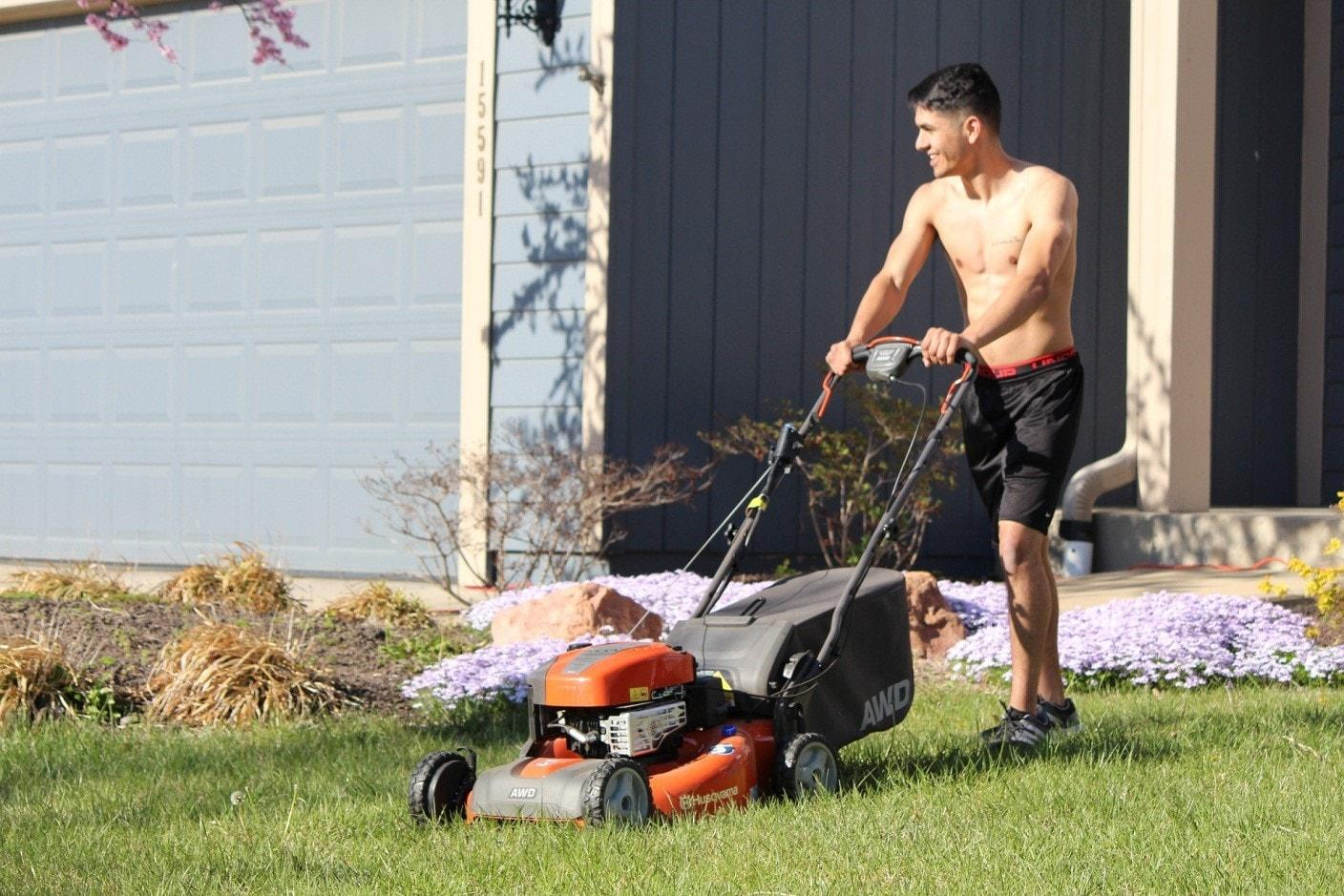 how-to-reseed-lawn-4