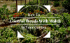 How-to-control-weeds-with-mulch-1