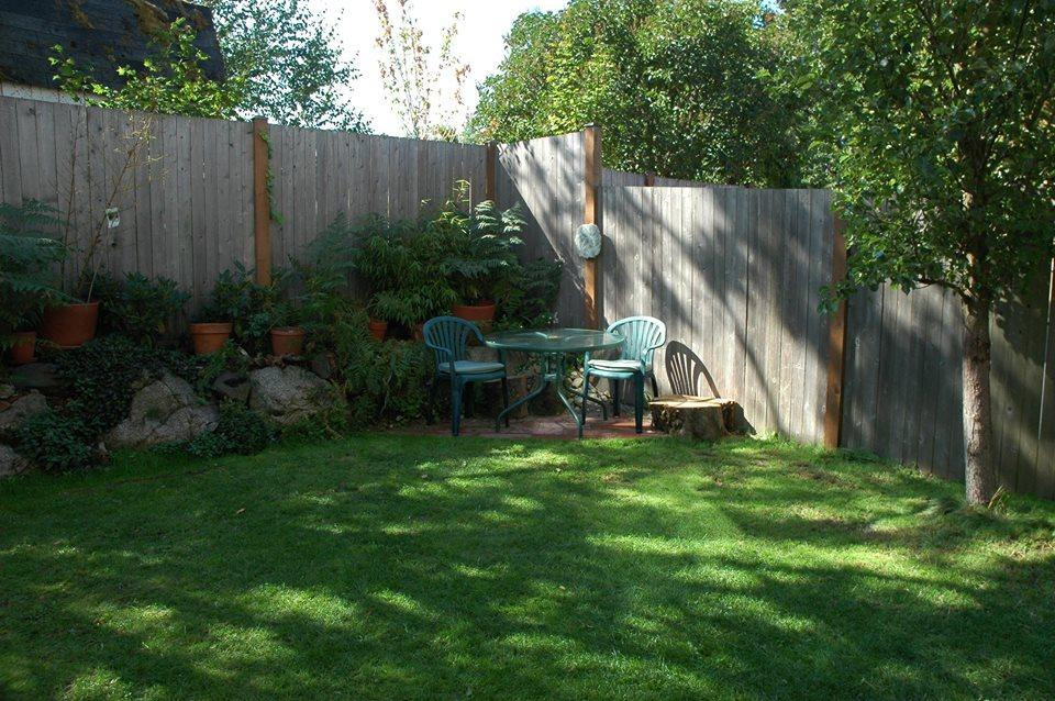 How-To-Grow-Grass-In-Shady-Areas-2