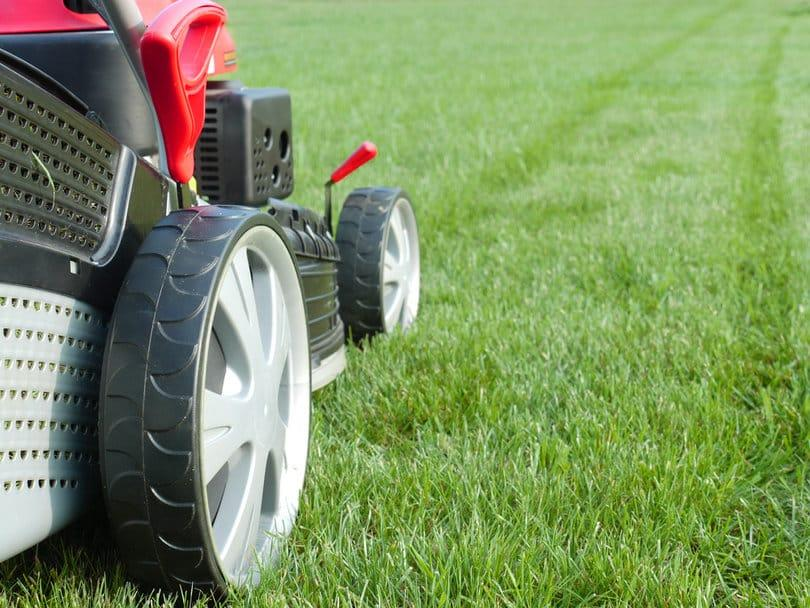 Close up picture of a lawn mower trimming the long grass