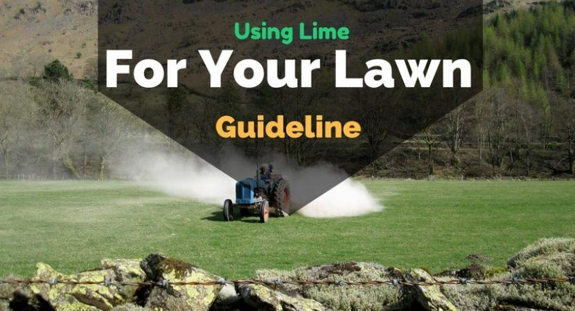 Using-lime-for-your-lawn-guideline