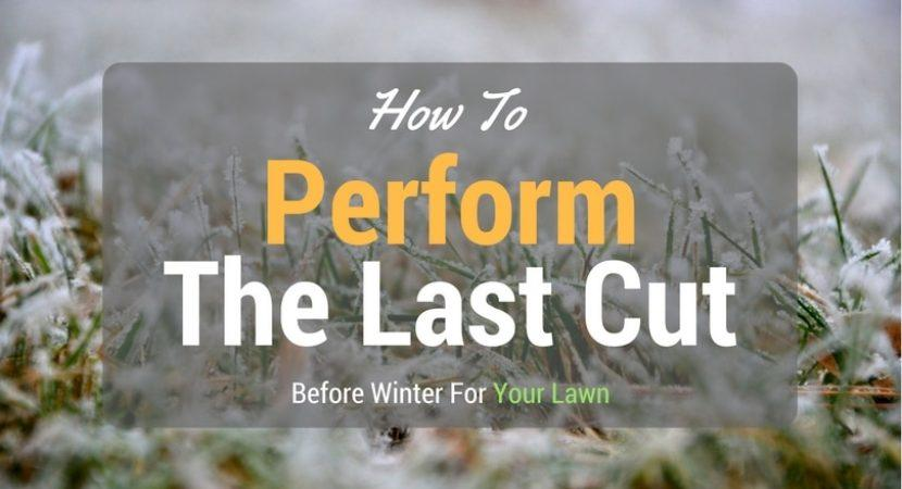 how to perform the last cut before winter for your lawn