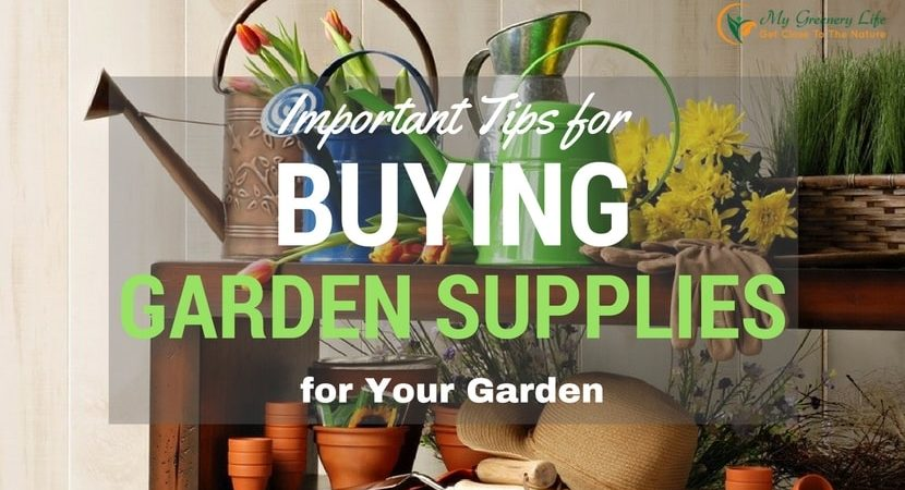 Buying-Garden-Supplies-for-Your-Garden