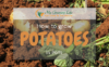 How-to-Grow-potatoes-in-pots