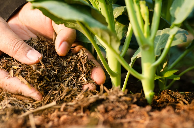 How-to-Make-Organic-Compost-for-Your-Lawn-and-Garden-4