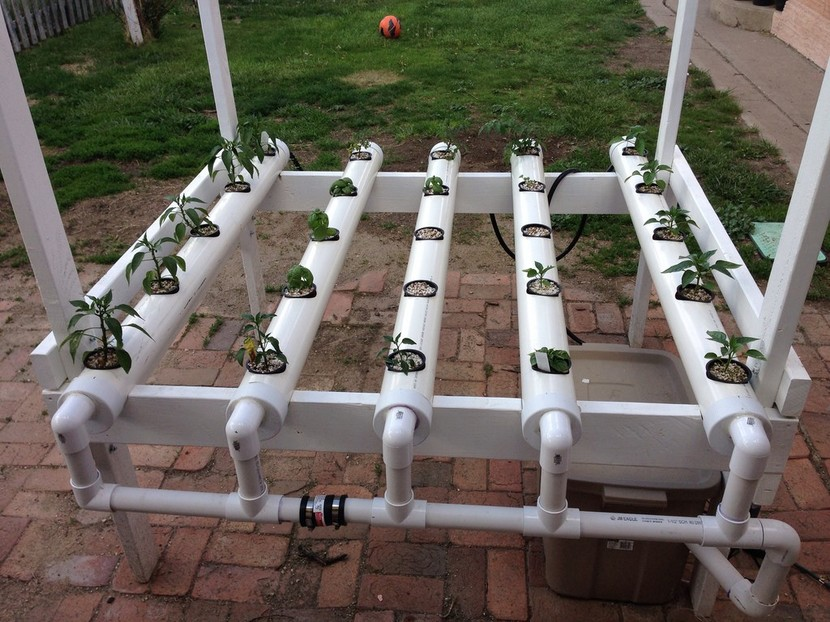 Best-Hydroponic-System-Reviews-2