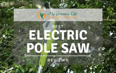 best-electric-pole-saw-reviews
