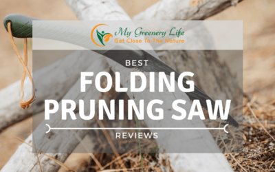 best-folding-pruning-saw-reviews-1