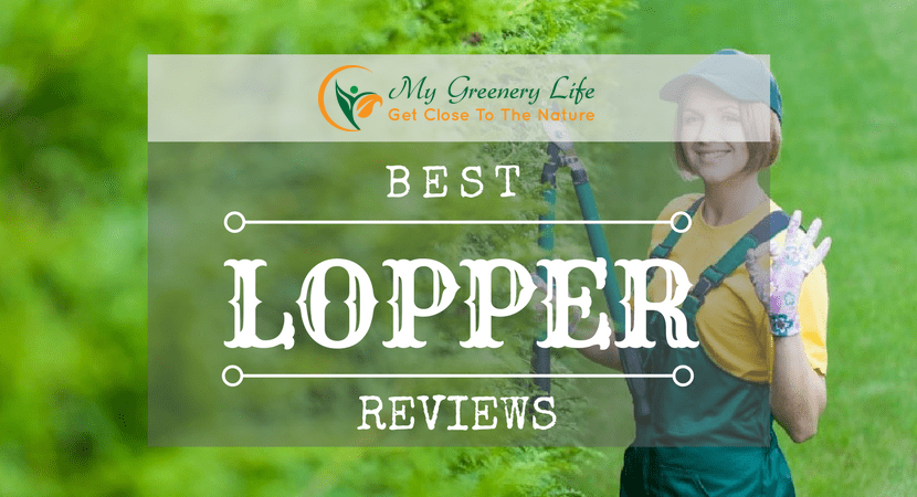 best-lopper-reviews-1