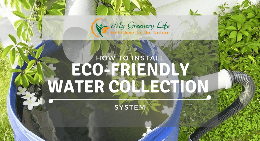 how-to-install-eco-friendly-water-collection-system-1