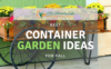 best-container-garden-ideas-for-fall-1