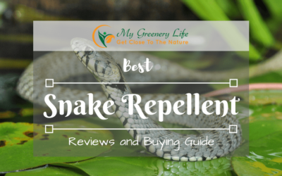 best-snake-repellent-reviews-2018