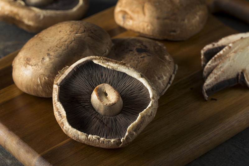 Growing Portobello Mushrooms At Home Ultimate Guide 2019 Edition