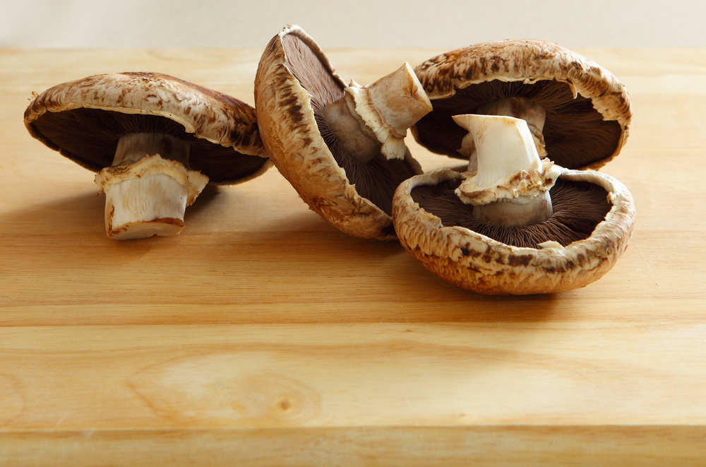 ultimate-step-by-step-guide-on-growing-portobello-mushrooms-4