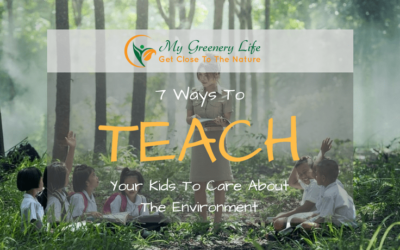 7-ways-to-teach-kids-to-care-environment-1