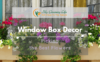 window-box-decor-picking-the-best-flowers-1